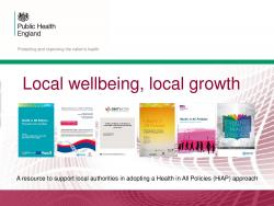 Health in All Policies: slideset thumbnail
